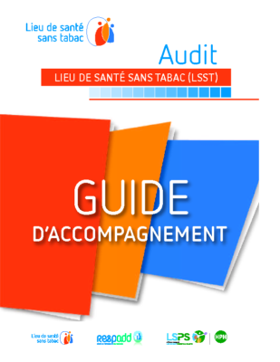 Guide accompagnement Audit LSST