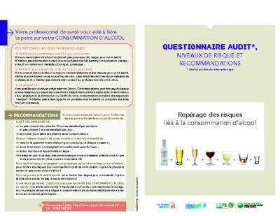 Questionnaire AUDIT
